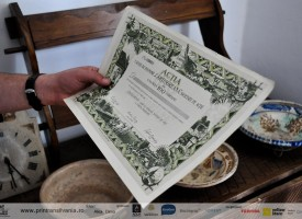 muzeul-badea-cartan-cartisoara-10