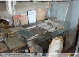 muzeul-badea-cartan-cartisoara-2