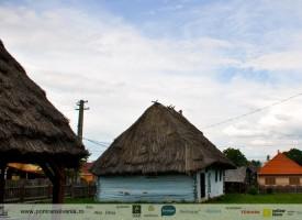 muzeul-badea-cartan-cartisoara-6