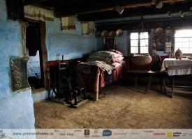 muzeul-badea-cartan-cartisoara-8