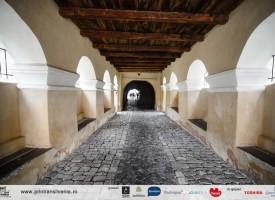 biserica-fortificata-Harman-2