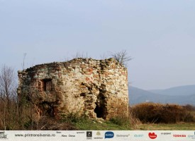Castelul-Haller-Coplean-6