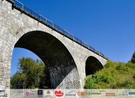 viaductul-teliu-05