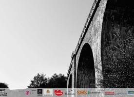 viaductul-teliu-07