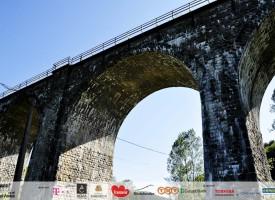 viaductul-teliu-08
