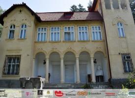 Muzeul-Goga-Ciucea-1